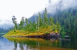 An Alaskan Oasis
