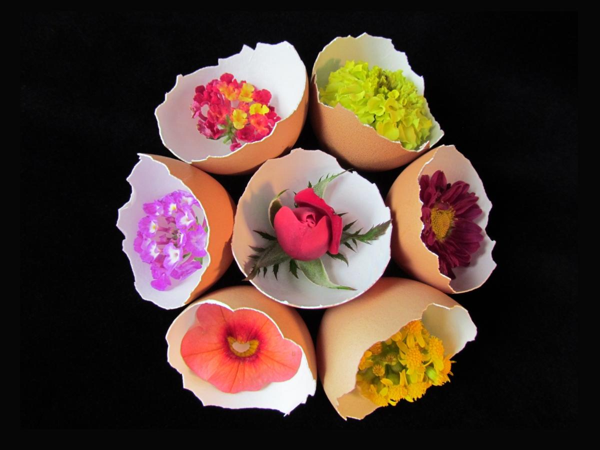 Egg Flower Bouquet