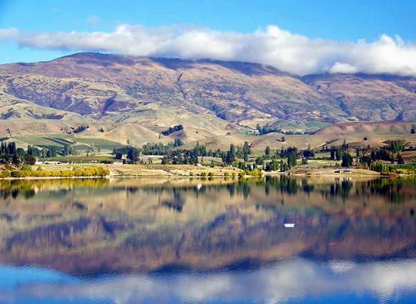 New Zealand Reflection
