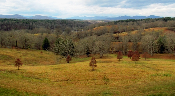 Fall landscape in North Carolina