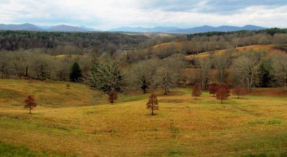Fall landscape in North Carolina