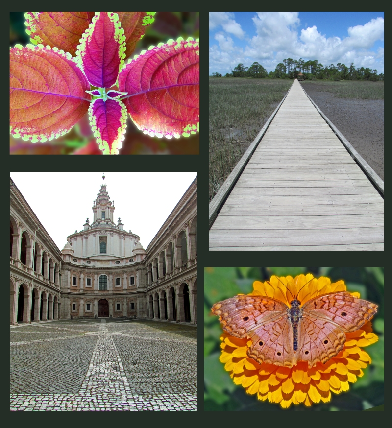 Weekly Photo Challenge:  Symmetry