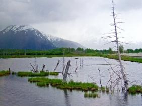 Alaska landscape photography