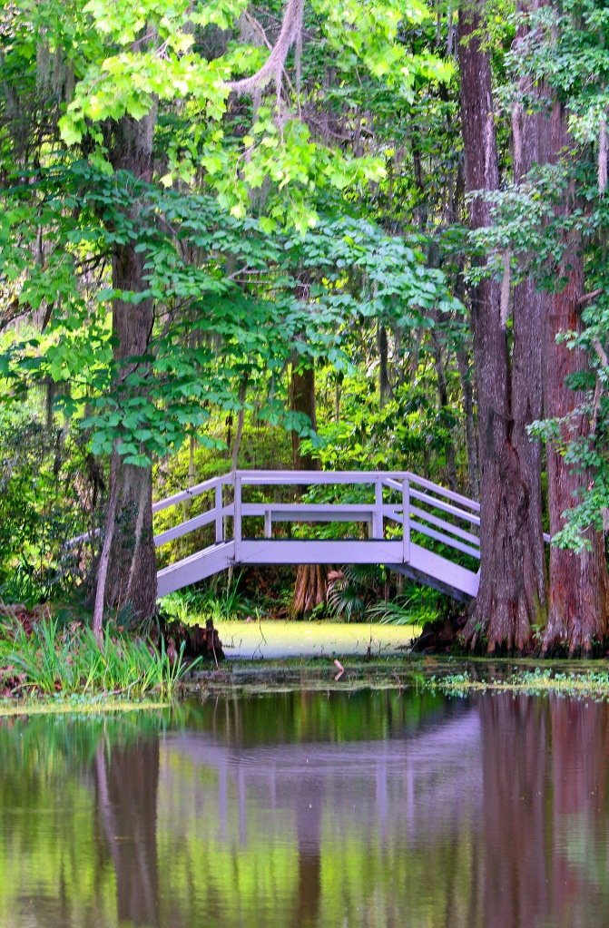 Reflection of a bridge at the Magnolia Plantation in SC.