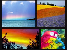 Weekly Photo Challenge: Roy. G Biv