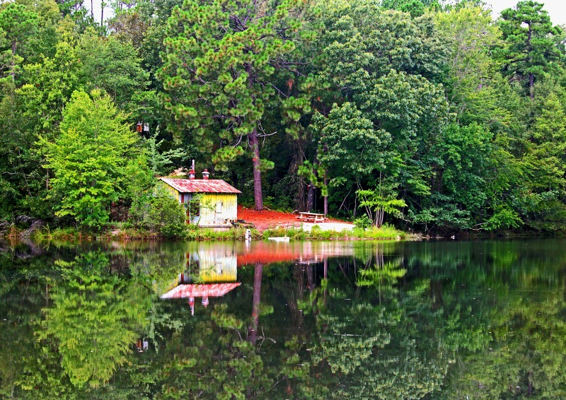 Nature photography of a cabin in the woods reflected in a pond