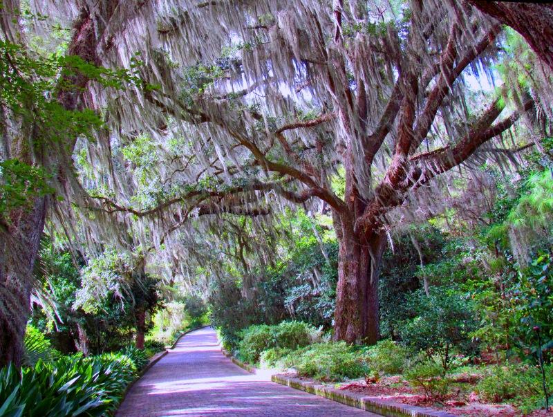 Maclay Gardens in Tallahassee, Florida