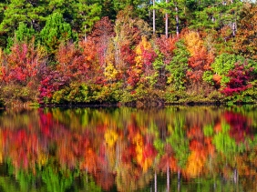 Landscape photography of all reflections