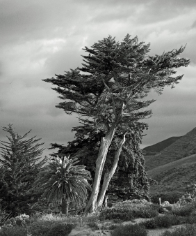 Black and white landscape photography.
