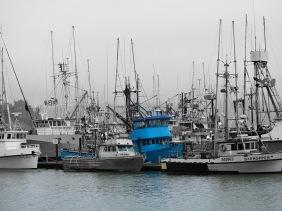 Fishing boats in Depoe Bay, Oregon.
