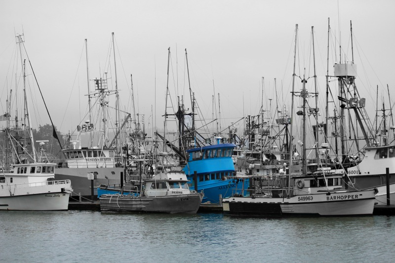 Fishing boats in Depoe Bay, Oregon.