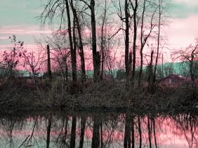 Landscape photography of a sunset reflection.