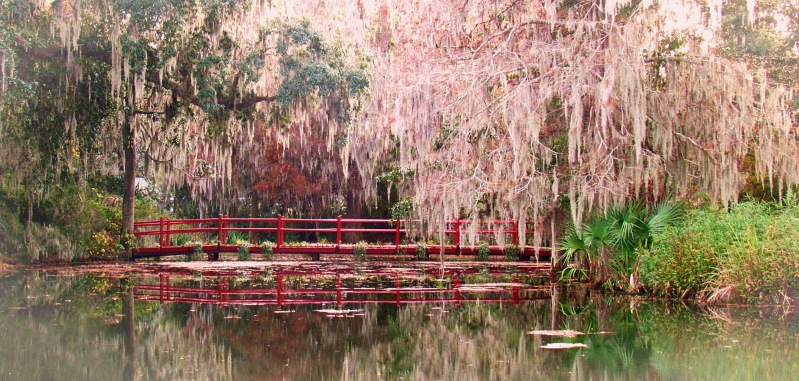 Landscape photography of a pond, bridge, and oak tree from the Magnolia Plantation in SC.