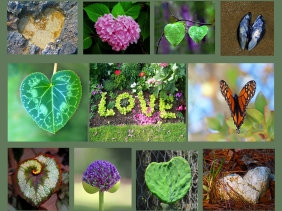 Weekly Photo Challenge: One Lov