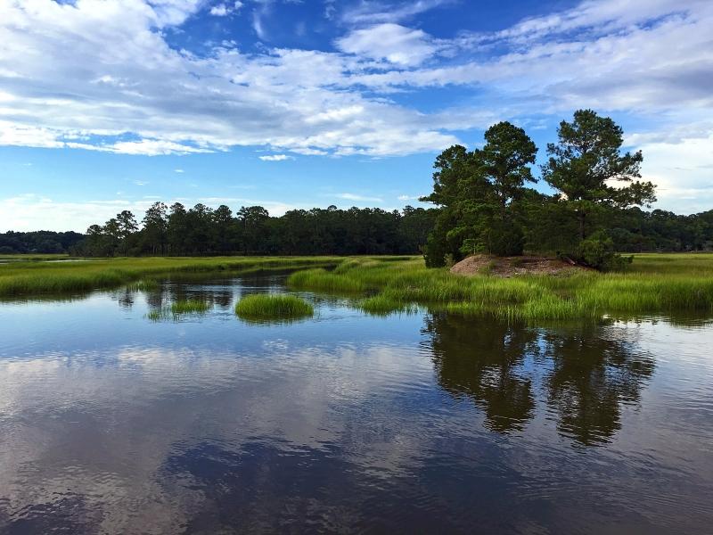 Landscape reflections of the grasslands of  South Carolina.