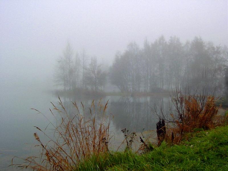 Landscape photography of a foggy pond.
