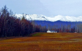 Landscape photography of a house, a field, trees, and the mountains of Alaska.