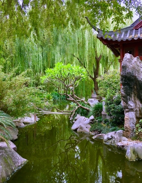 Landscape photography of the Chinese Garden of Friendship in Syndey, Australia.