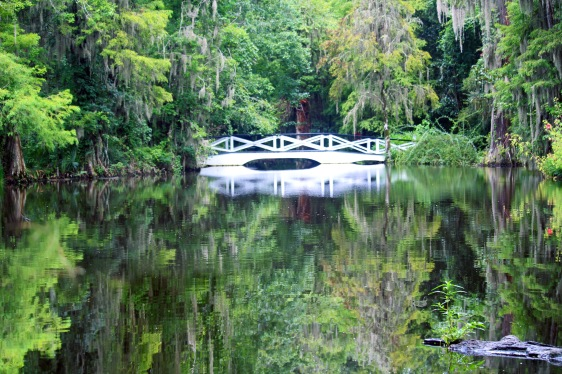 Landscape photography of a white bridge and lush green trees reflecting in a pond.