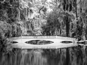Black and white landscape photography of a bridge and trees reflecting in a pond from Magnolia Plantations and Gardens, South Carolina.