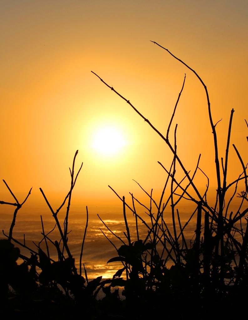Sunset photography from the Oregon Coast.
